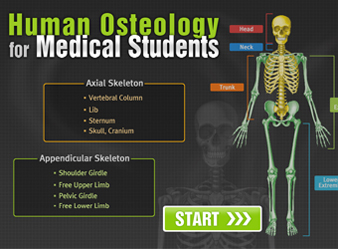 Human Osteology for Medical Students